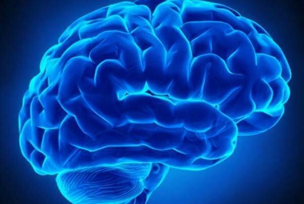 روشی علمی برای توانبخشی افراد مبتلا به ضایعه مغزی ارائه شد